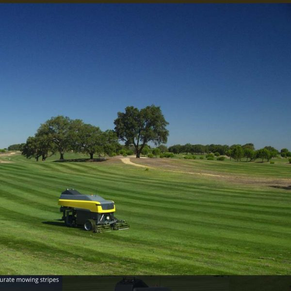 4 Beautiful accurate mowing stripes
